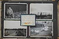 """""""Sophies Entscheidung – Der tschechische Weg"""" (Foto: Archiv des Tschechischen Zentrums Wien)"""