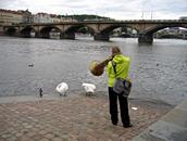Photo: Favourite Sounds of Prague