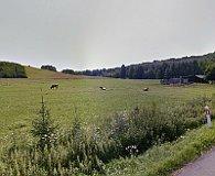 Stara Kraśnica (Foto: Google Street View)