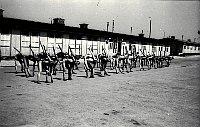 KZ Mauthausen (Foto: Bundesarchiv, Bild 192-058 / CC-BY-SA)