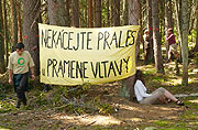 Members of the organisation Friends of the Earth protest against the planned felling, photo: CTK