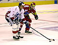 All-Star-Game im Eishockey (Foto: CTK)