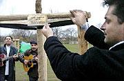 Strom symbolizující zapuštění kořenů národnostních menšin žijících v ČR, foto: ČTK