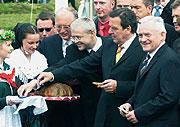 Leszek Miller, Gerhard Schröder, Vladimír Spidla y Günter Verheugen, foto: CTK