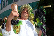 Wine harvesting celebrations in Mikulov, photo: CTK
