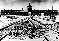 Auschwitz (Photo: CTK)