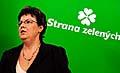 Vizeparteichefin der Grünen Dana Kuchtová (Foto: ČTK)
