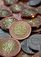 50-Kronen-Münzen (Foto: ČTK)