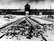 Koncentrační táborv Osvětimi