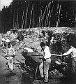 Steinbruch in Lety