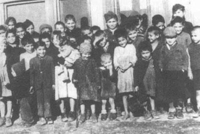 a look into the holocaust through survivors
