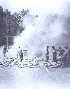 Sonderkommando in Auschwitz-Birkenau