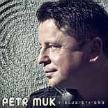 Petr Muk: 'Im Labyrinth der Tage'