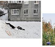 'Le vie russe', photo: Editions Allia