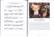 Musical Atlas of Mushrooms