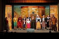 Divadelní soubor Vlastenecká omladina z Vídně, foto: www.omladina.at