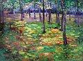 Bechyňská obora I(srnky), 1899