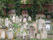 Jewish cemetery