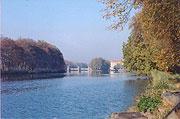 The Labe River