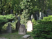 New Jewish Cemetery, photo: Kristýna Maková