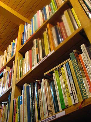 Литература объединяет чешских и русских интеллектуалов: (Фото: Кристина Макова, Чешское радио - Радио Прага)