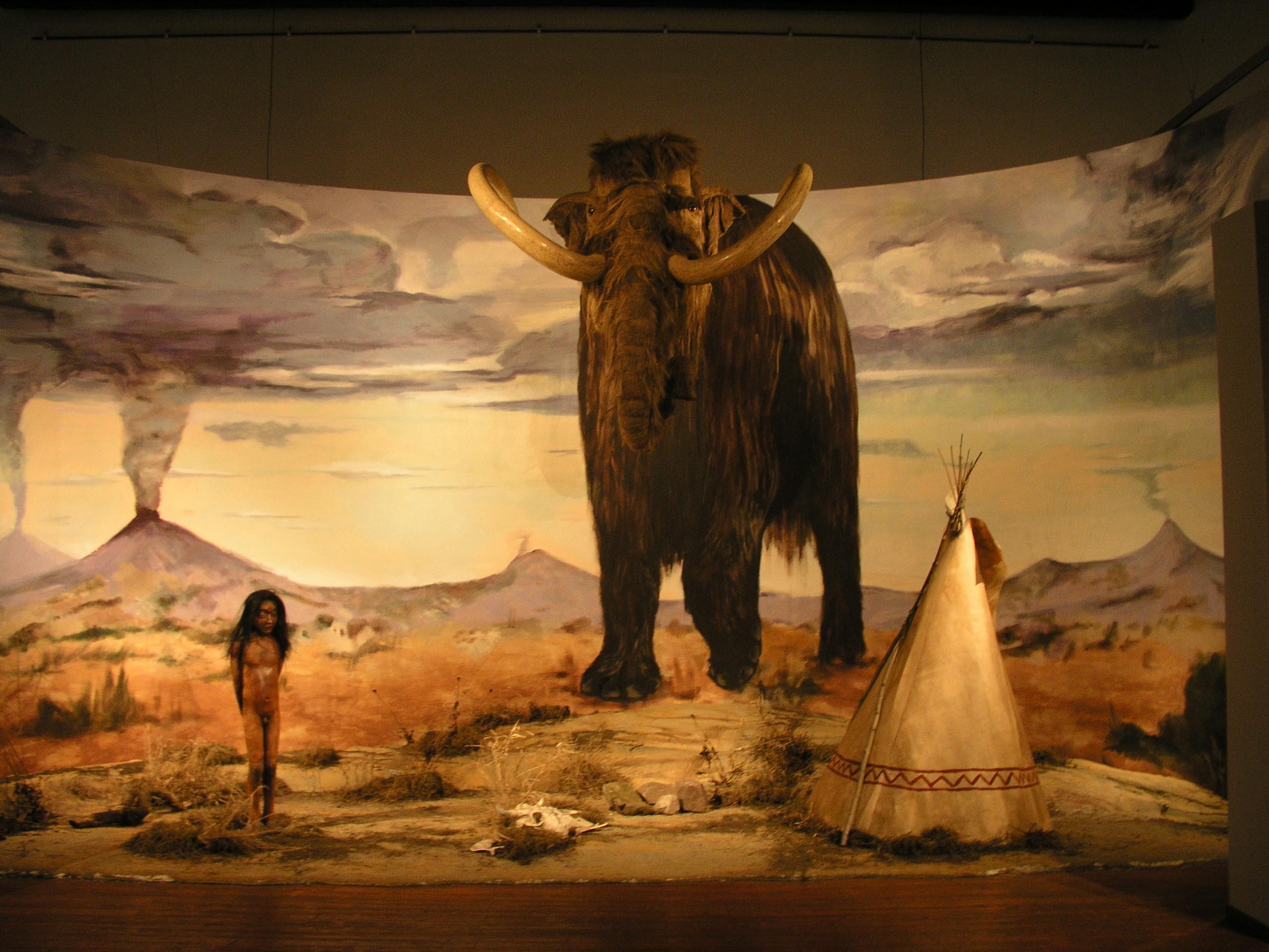 l'image de l'homme préhistorique - Page 6 Burian_zdenek_vystava4