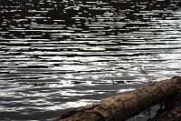 Proč stahovat kalhoty, když brod je ještě daleko? (Иллюстративное фото: Барбора Кментова, Чешское радио - Радио Прага)