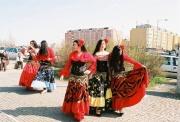 Mezinárodní den Romů v Praze v roce 2010 (Foto: Petr Axmann)