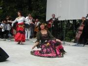 Romský festival v Lysé nad Labem (Foto: Anna Poláková)