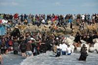 Procesí se svatou Sárou vstoupilo do moře (Foto: Jana Šustová)