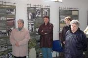 Výstava Genocida Romů za 2. světové války (Foto: Jana Šustová)