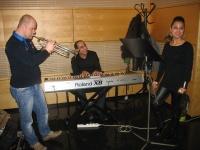 Hudební trio The Faces Up (Foto: Jana Šustová)