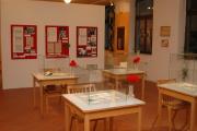 Výstava o Svazu Cikánů-Romů (Foto: Jana Šustová)