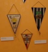 Vlaječky romských sportovních klubů (Foto: Jana Šustová)