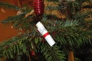 Peníze na vánočním stromečku (Foto: Jana Šustová)