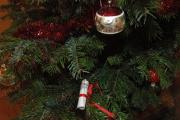 Vánoční stromeček (Foto: Jana Šustová)