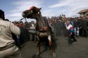 Koňské Velikonoce (Foto: Nikola Mihov)
