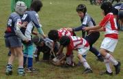 Děti zápasí v ragby (Foto: Jana Šustová)