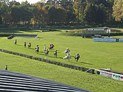 Le Grand Steeple-chase de Pardubice, photo: Radio Prague