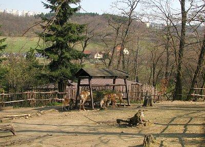le meilleur zoo du monde