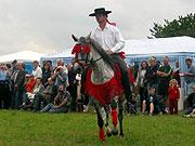 Der Tag der spanischen Pferde in Cesov (Foto: Pavla Jedlickova)
