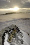 Kontroverzní kámen s nápisem Obětem (Foto: ČTK)