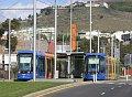 Tranvías de Tenerife