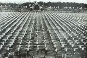 Kříženeckého filmové závěry ze Všesokolského sletu 1901