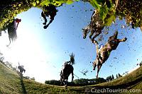 Le Grand Steeple-Chase de Pardubice, photo: CzechTourism