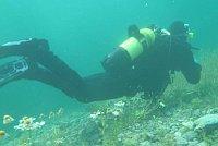 Taucher - potápěč (Foto: Thomei08, Public Domain)