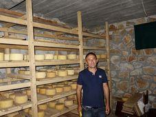Livno cheese, photo: Filip Šebek / Czech Development Agency
