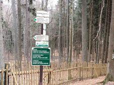 Boubínský prales, foto: Filip Černý, archiv ČRo