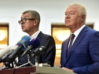 Andrej Babiš und Jaroslav Faltýnek (Foto: ČTK)
