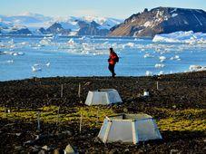 Výzkum českých vědců na Antarktidě, foto: archiv Masarykovy univerzity